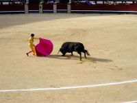 Madrid_bullfight